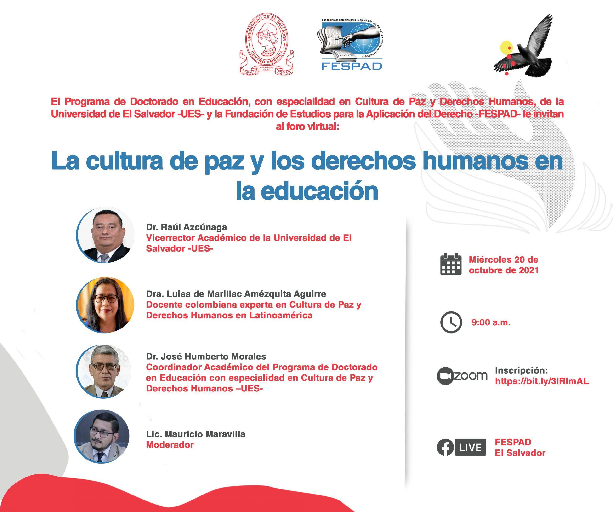 Webinar: La cultura de paz y los DDHH en la educación
